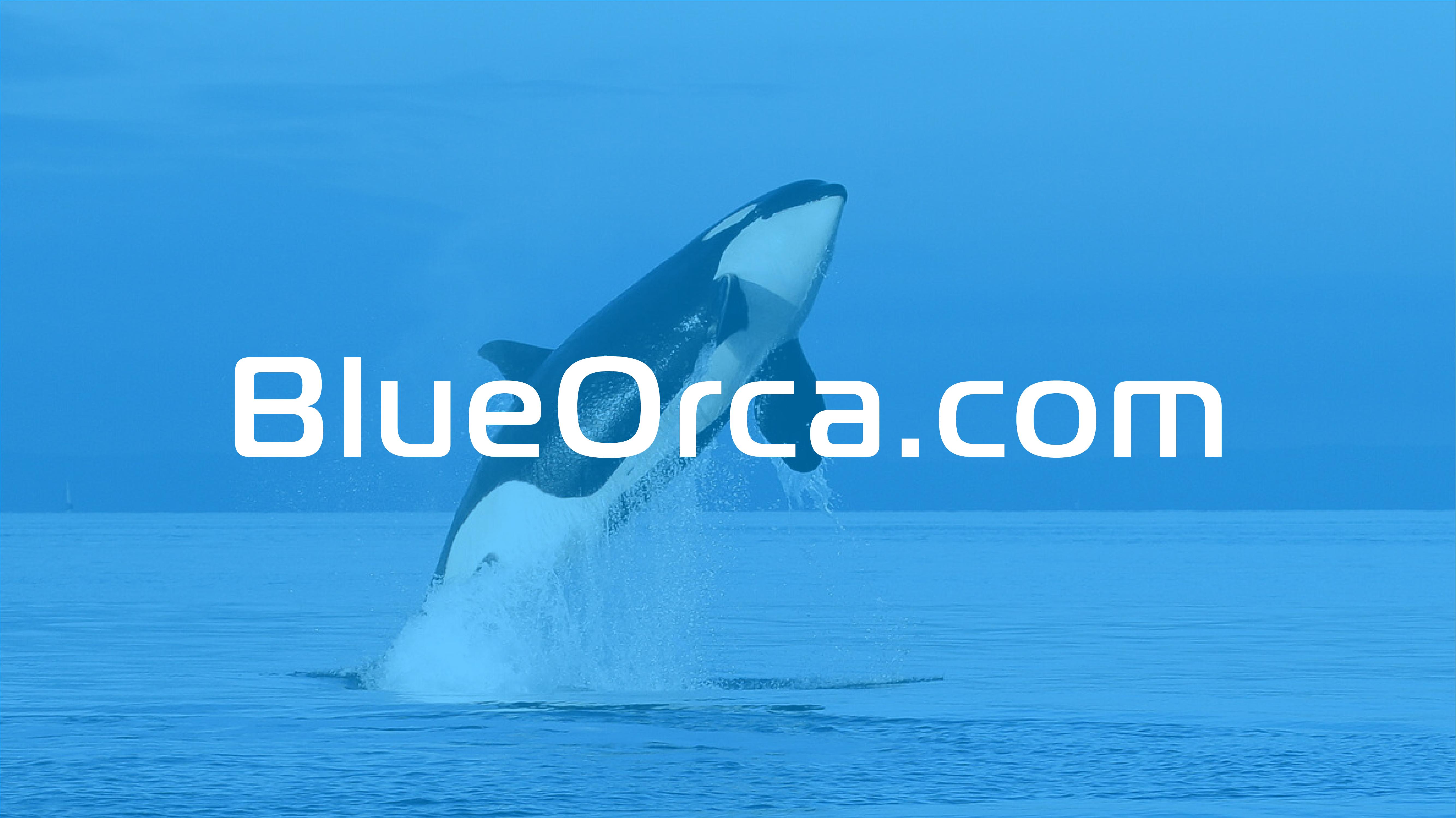 Blue Orca_TP_1